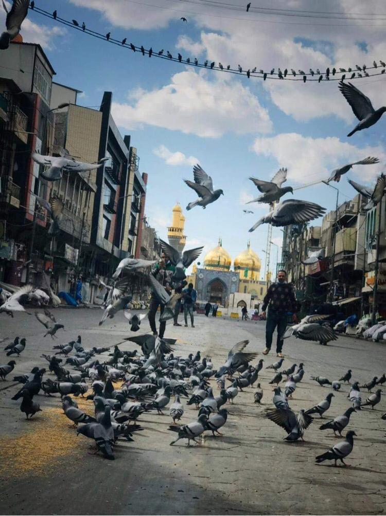 صورة للحمامات في الامام الكاظم